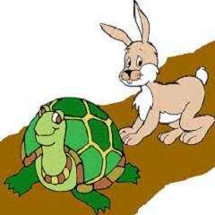 Rùa và Thỏ
